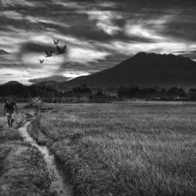 Province by Mj Loyola Ganitano - Digital Art Places