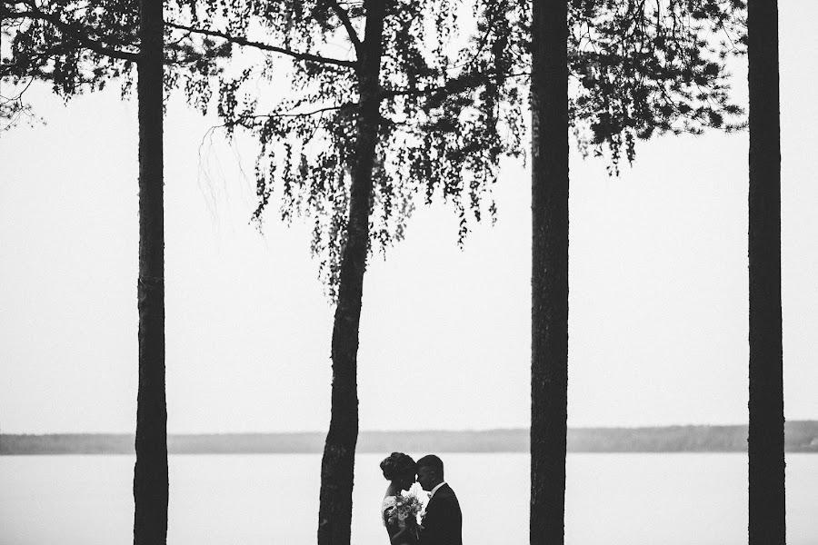Wedding photographer Denis Persenen (krugozor). Photo of 22.11.2015