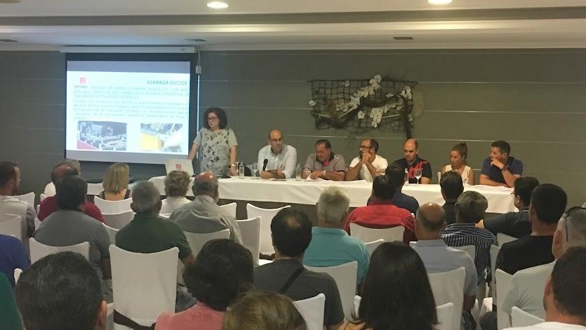 Imágenes de la asamblea de socios de la organización de productores AFE de Almería.