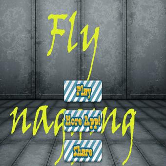 Fishing flies : fly gear