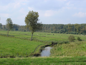 Photo: Polder Kruibeke 2005