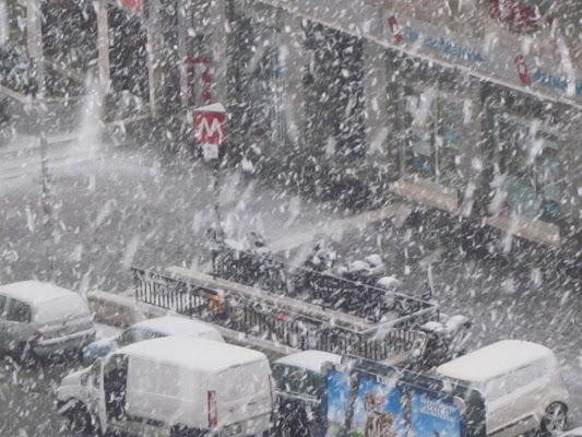 Neve a Roma di emanuela_dolci