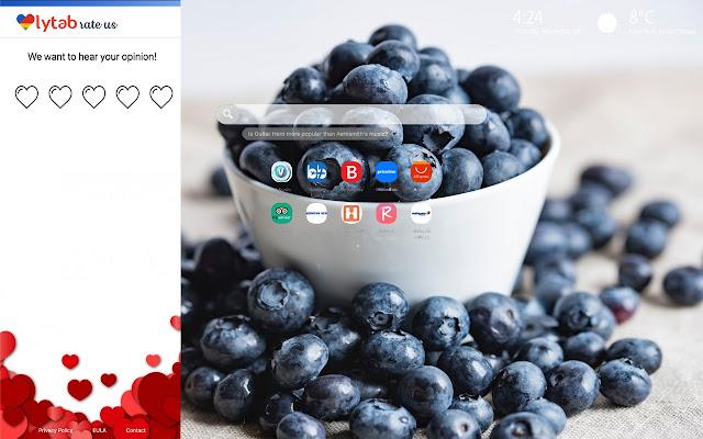 Blueberries Wallpaper New Tab