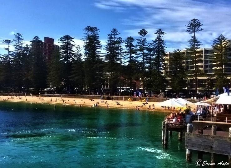 【世界の街角】オーストラリア・シドニーにあるサーファーの聖地「マンリービーチ」