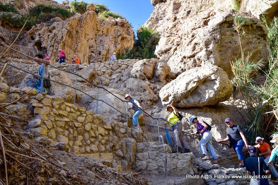 Туристический маршруты в Израиле. На экскурсии в заповеднике Эйн-Геди с гидом в Израиле Светланой Фиалковой.