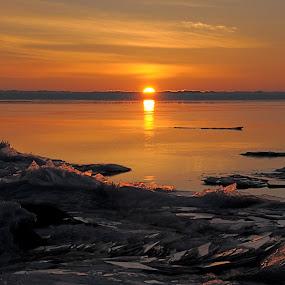 Golden Superior Sunrise by Sandra Updyke - Landscapes Waterscapes ( ice shards, ice, north shore, lake superior, sunrise )