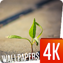 Plants Wallpapers 4k icon