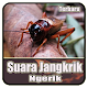 Download Suara Jangkrik Ngerik Mp3 Offline For PC Windows and Mac
