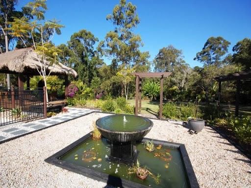 Download fish pond design for pc for Garden pond design software free download