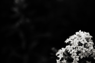 Photo: goodnight good people, I'm off to bed...  #monochromeartyclub  #bwphotography