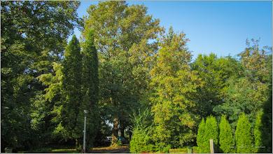 Photo: Turda - Aleea Obeliscului - 2018.08.30