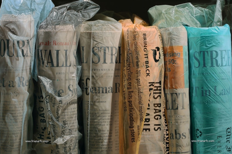 Resultado de imagen de steve mills