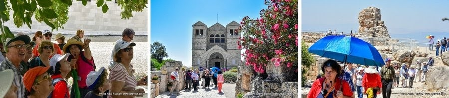 Отзыв о одном из лучших гидов в Израиле.