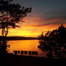 Sunset on the sea by Nat Bolfan-Stosic - Uncategorized All Uncategorized ( towel, sunset, trees, sea, landscape )