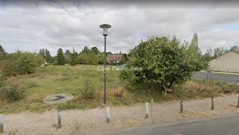 terrain à La Cour-Marigny (45)