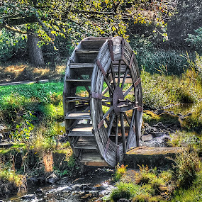 old water wheel by John Broughton - Artistic Objects Other Objects ( old and broken down, stream, grass, water wheel, trees )