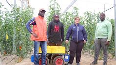 Carmen con tres trabajadores, miembros de una misma familia maliense.