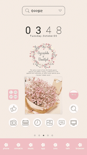 Gypsophila DodolLauncherTheme