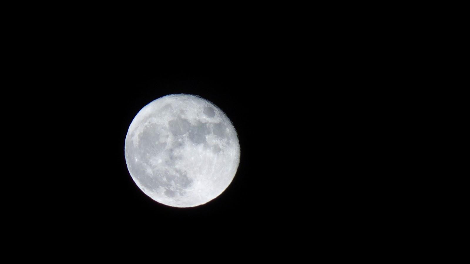 7th Moon 2.jpg
