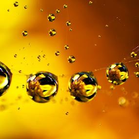 by Ahmad Soedarmawan - Abstract Water Drops & Splashes