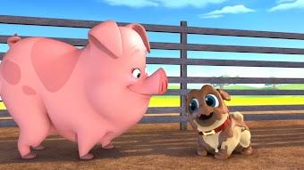 Bob Loves Mona / Pigs and Pugs