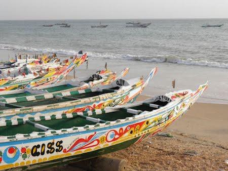 Een warm hart voor Senegal Schriek