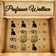 Professor Wallace - Puzzle