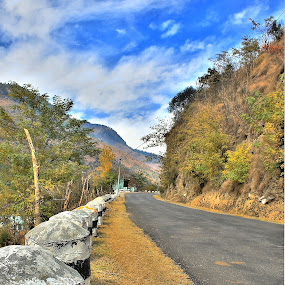 Open Spring Road by Prashant Thakur - Nature Up Close Other Natural Objects
