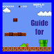 Guide for mario