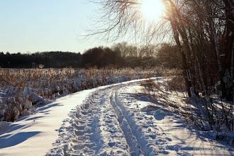Photo: Snowy dike trail