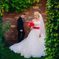 Wedding photographer Andrey Dolzhenko (andreydolzhenko). Photo of 15.02.2016