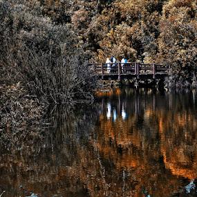 el dorado park by Yoy Escosura - Landscapes Mountains & Hills