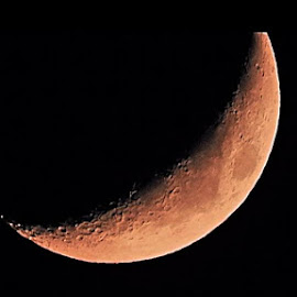 Crescent Moon by Bill Martin - Landscapes Starscapes ( macro, moon, craters, night, crescent,  )