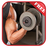 Biceps & Triceps Workouts