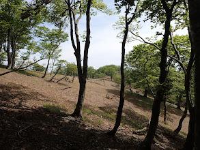 銚子の東斜面
