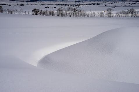 ふんわり積もる雪の小山