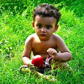Playing Tennis Ball by Umair Nayab - Babies & Children Toddlers ( baby portrait, toddler, baby photography, tennis ball, green grass,  )