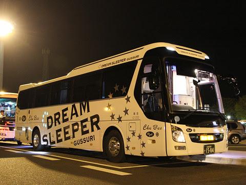 中国バス「ドリームスリーパー」 G1202 足柄SAにて