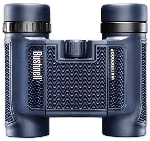 Best Binocular to buy in 2019