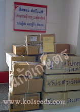"""Photo: ส่งของที่ไปรษณีย์ เมื่อ 12.10.56 ค่ะ  (วันนี้ สะสมเยอะหน่อย เนื่องจาก หยุดทำการ 1 วัน และ ส่งของไม่ทัน 1 วัน --"""" ค่ะ)"""