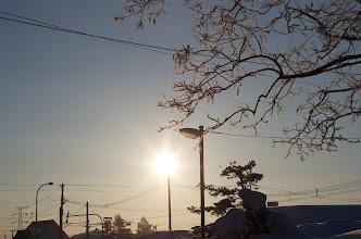 Photo: 北竜町の景色・弥生の2