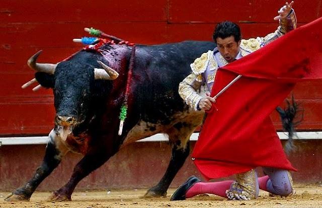 Ruiz Manuel en la Plaza de toros de Valencia.