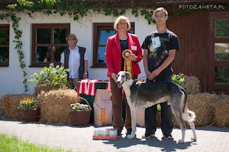 Zdjęcie: Zwyc kl championów - ORDYNAT MICHOROWSKI Celerrimus