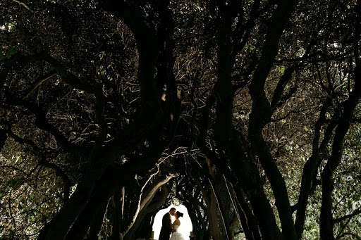 Wedding photographer Donatella Barbera (donatellabarbera). Photo of 02.04.2016
