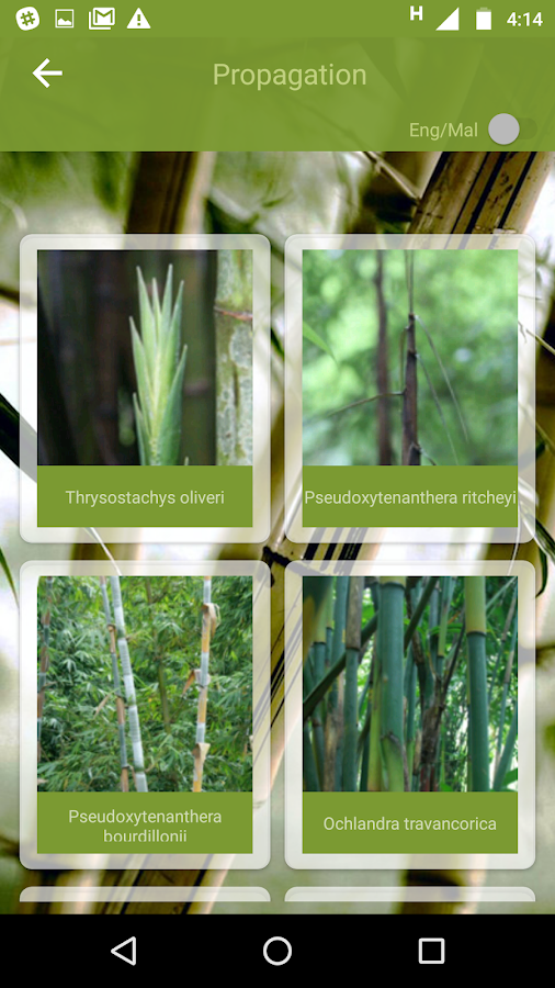 Kerala State Bamboo Mission- screenshot