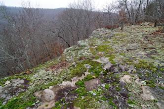 Photo: Bluff above Whitaker Creek