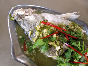 Photo: Steamed sea perch with chilli-lime sauce, Yok Yor