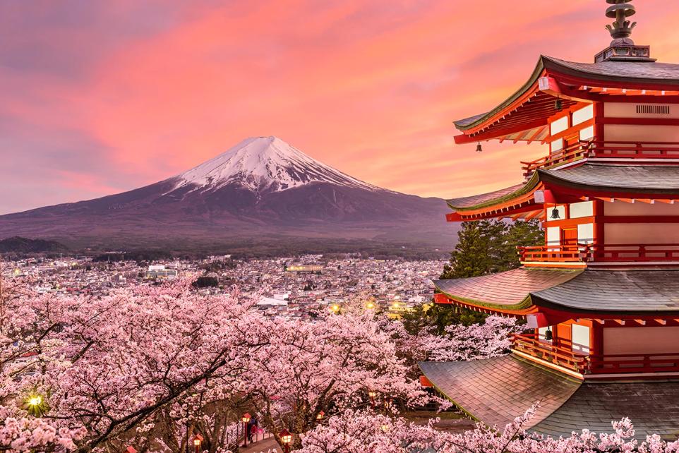 Los cerezos en flor y el Monte Fuji, iconos de Japón.