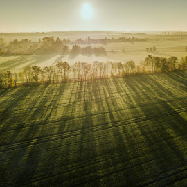 by David Douglas - Landscapes Prairies, Meadows & Fields