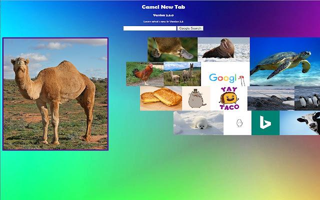 Camel New Tab